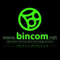 Bincom Internship